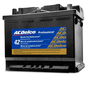 AcDelco 100Ah DIN 60038